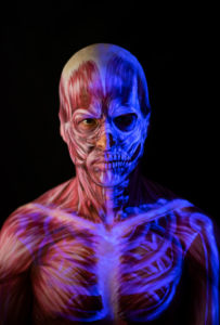 muscle uv bones body paint uv makeup anatomy